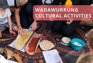 Bayside Alive! - Explore Wadawurrung Culture in Indented Head